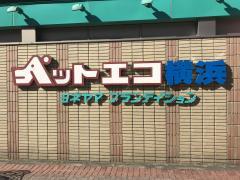 ヨネヤマプランテイションペットエコヨコハマ都筑店