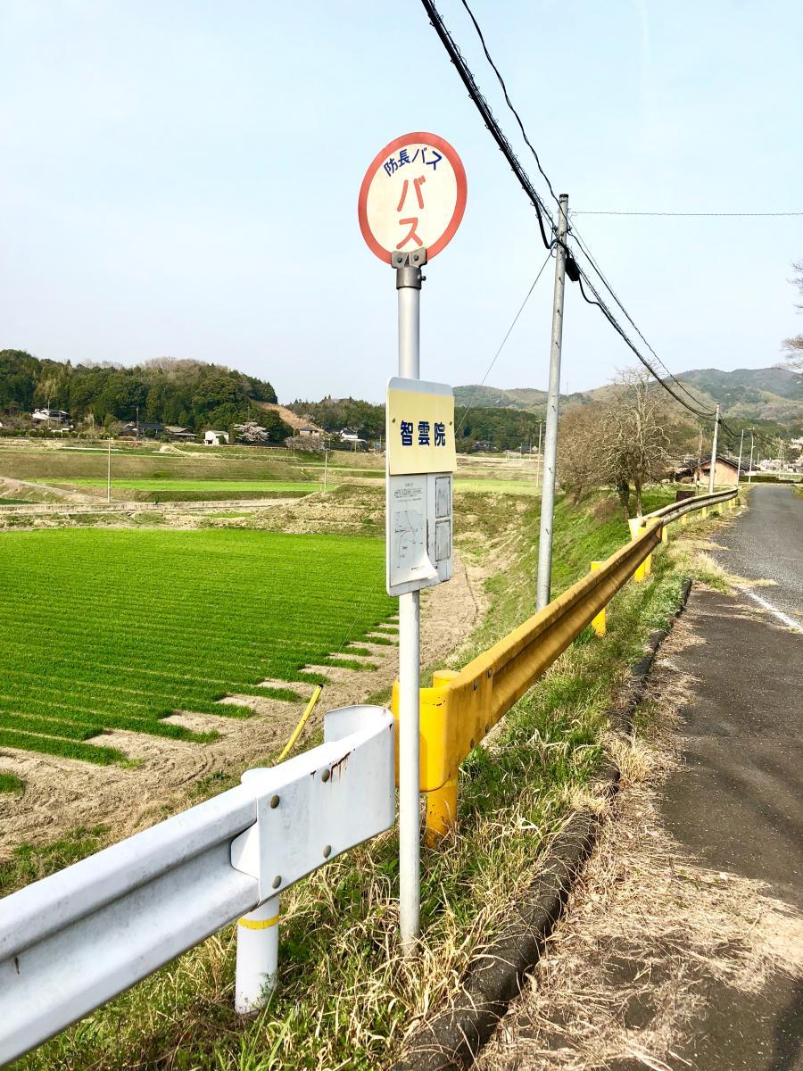智雲院」バス停留所(柳井市)の...