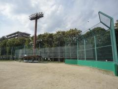 忠道公園野球場