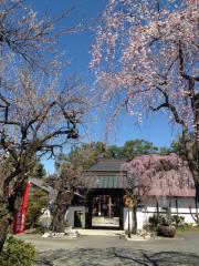 無量山西光寺(第16番札所)