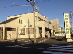 藤原動物病院