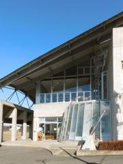 泉崎図書館