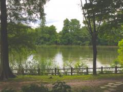 柏ビレジ水辺公園