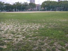 荒子公園野球場
