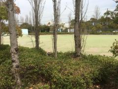 興亜池緑地