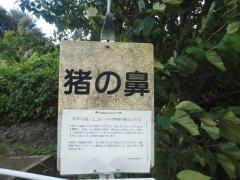 「猪ノ鼻」バス停留所
