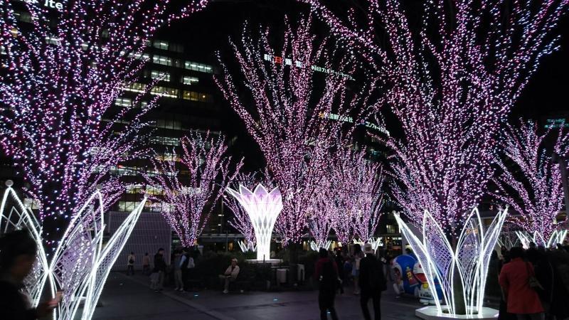 博多駅夜景