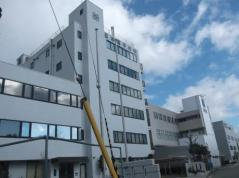日本電子材料株式会社