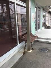 砂川犬と猫の病院