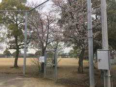 高松市彦作池公園