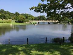 大野湊緑地公園