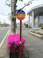「秋田テレビ前」バス停留所