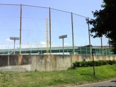 南港中央公園野球場