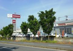 千葉トヨタ自動車木更津ほたる野店