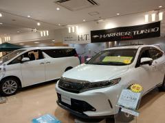 岐阜トヨペットレインボーモール店