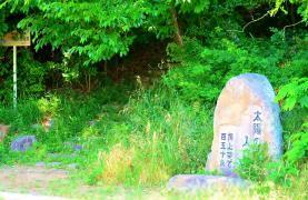第7号五ケ丘緑地