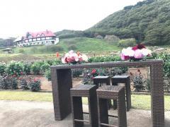 秋田国際ダリア園