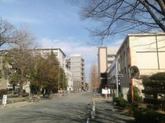 徳島大学大学院