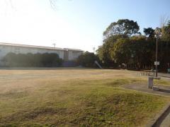 八幡運動公園