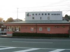 松村犬猫病院