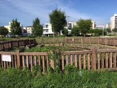西代蓮池公園