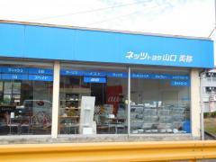 ネッツトヨタ山口美祢店