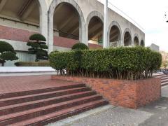 栃木県総合運動公園陸上競技場