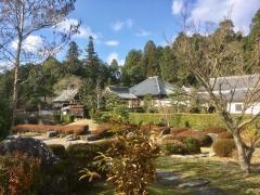 大池寺蓬莱庭園