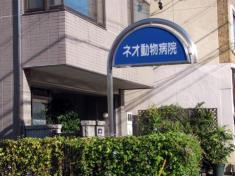 ネオ動物病院
