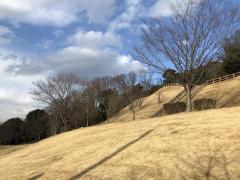 垂坂公園羽津山緑地