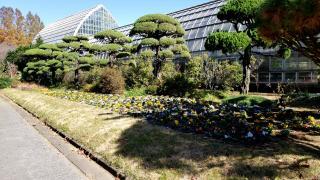 さいたま市園芸植物園
