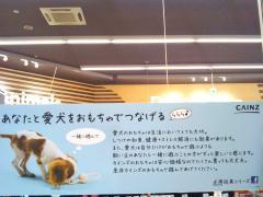 ペッツワン名古屋大高インター店