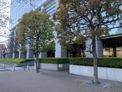 東京海上日動あんしん生命保険株式会社 東京中央生保支社