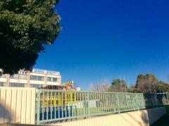 毛利小学校