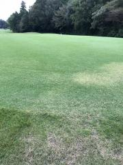 太平洋クラブゴルフアカデミー江南校