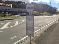 「小林牧場前」バス停留所