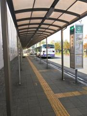 「桜区役所」バス停留所
