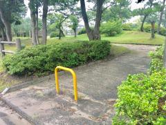 しらかば公園