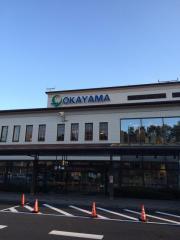 岡山空港(岡山桃太郎空港)