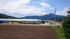 あざみサクランボ園(沼田農園)