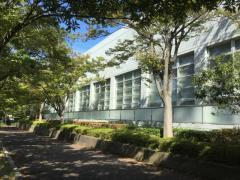 平塚総合体育館温水プール