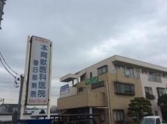 本間獣医科医院春日部病院