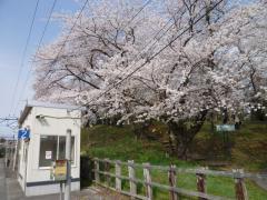 茂吉記念館前駅