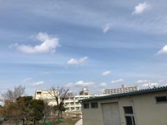 福泉東小学校
