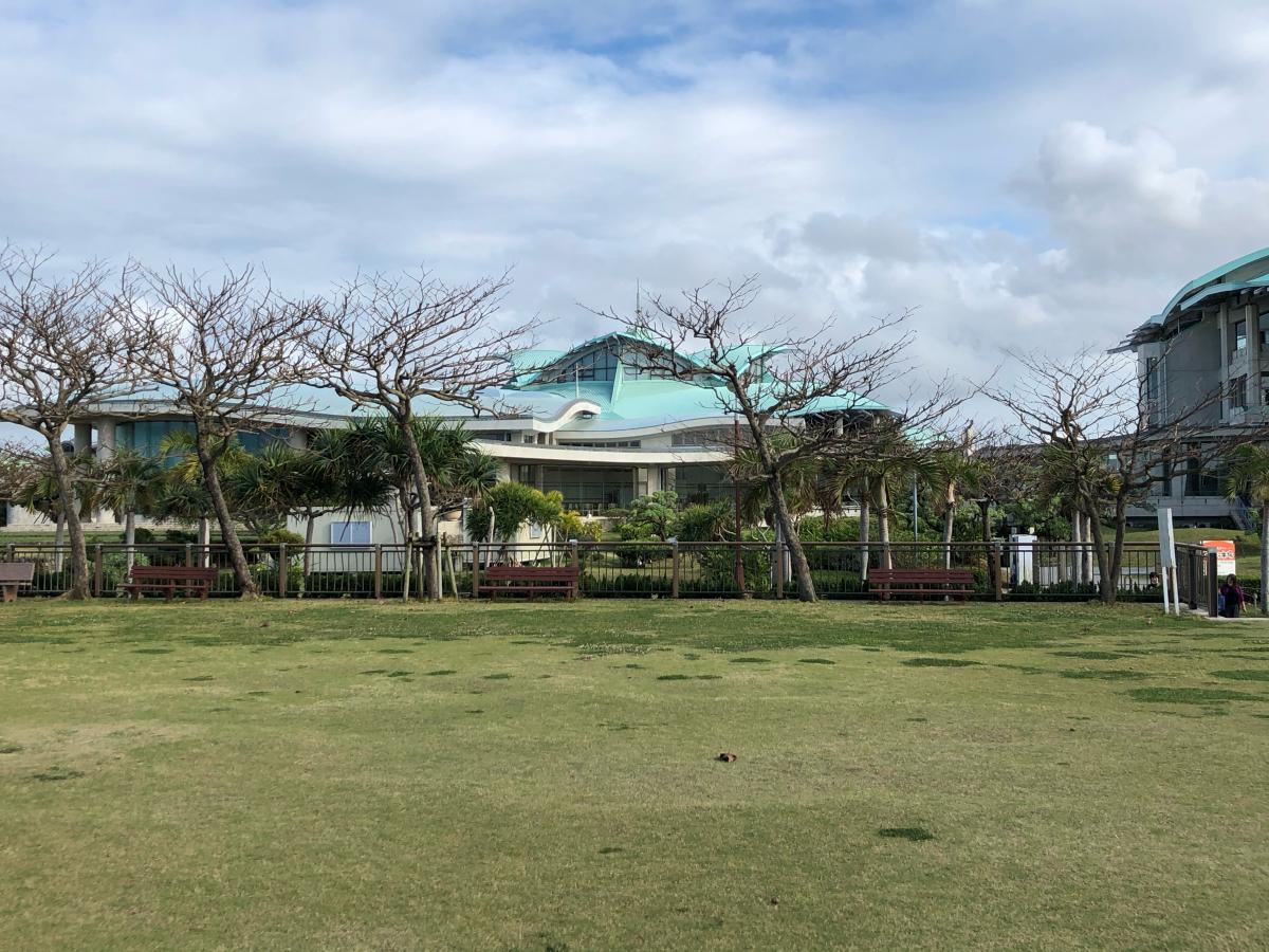 沖縄コンベンションセンターです。