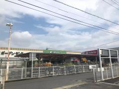 DCMカーマ 可児店
