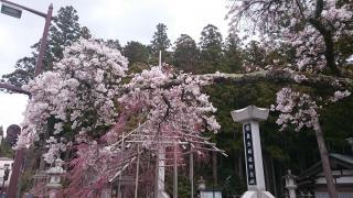 高野山金剛峰寺 奥之院