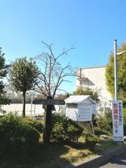 小学校 藤尾 藤尾小HP_トップページ
