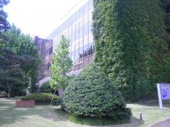 日本歯科大学新潟短期大学