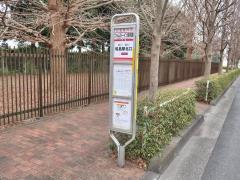 「フォレスト・イン昭和館」バス停留所